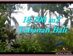 TANAH di TABANAN BALI DIJUAL MURAH 182 Are View kebun dan laut