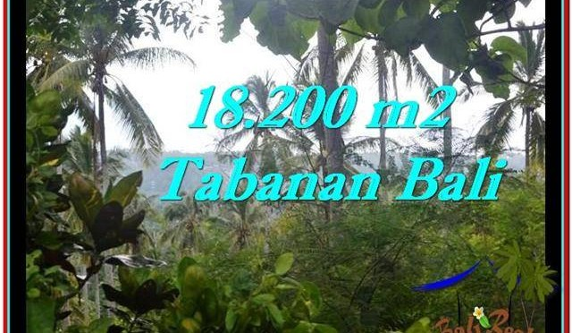 DIJUAL TANAH di TABANAN BALI Untuk INVESTASI TJTB254