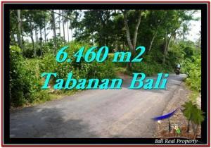 TANAH di TABANAN DIJUAL 6,460 m2 di Tabanan Selemadeg