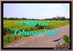 INVESTASI PROPERTI, DIJUAL TANAH di TABANAN BALI TJTB258