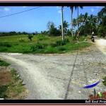 TANAH di TABANAN JUAL MURAH 20 Are View sawah, laut, Kota Denpasar