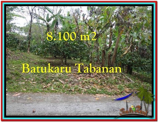 TANAH di TABANAN BALI DIJUAL MURAH Untuk INVESTASI TJTB212