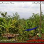 JUAL TANAH MURAH di TABANAN 5,000 m2 View gunung dan denpasar