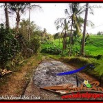 TANAH di TABANAN JUAL MURAH 100 Are View Sawah