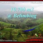 TANAH di TABANAN BALI DIJUAL MURAH 10,700 m2 di Tabanan Selemadeg