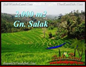 TANAH DIJUAL MURAH di TABANAN 2,000 m2 di Tabanan Selemadeg