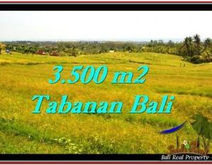 TANAH di TABANAN DIJUAL 3,500 m2 di Tabanan Selemadeg