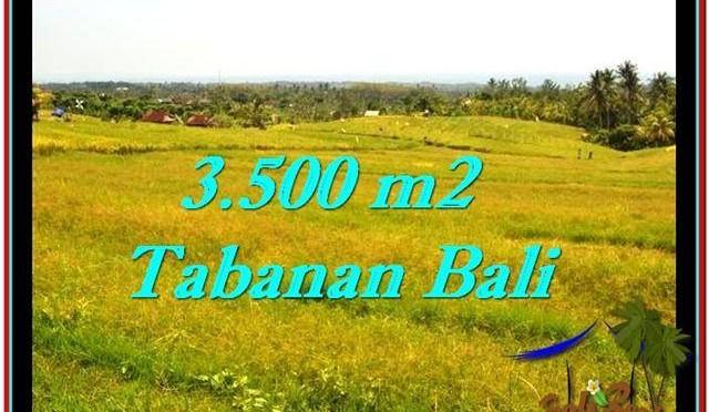JUAL TANAH MURAH di TABANAN BALI 3,500 m2 View sawah dan laut