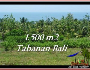 JUAL TANAH MURAH di TABANAN 1,500 m2  View Laut dan Kebun