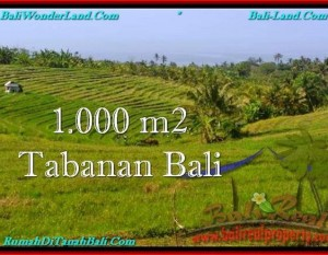 JUAL TANAH di TABANAN 1,000 m2  View Laut dan sawah