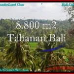TANAH di TABANAN JUAL MURAH 88 Are View laut, Sawah dan Gunung