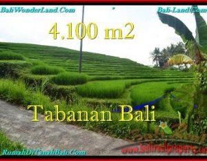 TANAH MURAH JUAL di TABANAN BALI 41 Are View sawah dan Kebun