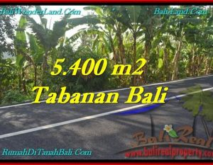 DIJUAL TANAH di TABANAN 54 Are di Tabanan Selemadeg