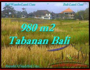 TANAH di TABANAN BALI DIJUAL MURAH 980 m2  View Sawah dan Laut
