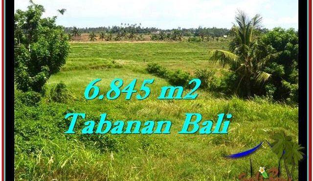 INVESTASI PROPERTI, DIJUAL TANAH di TABANAN TJTB245