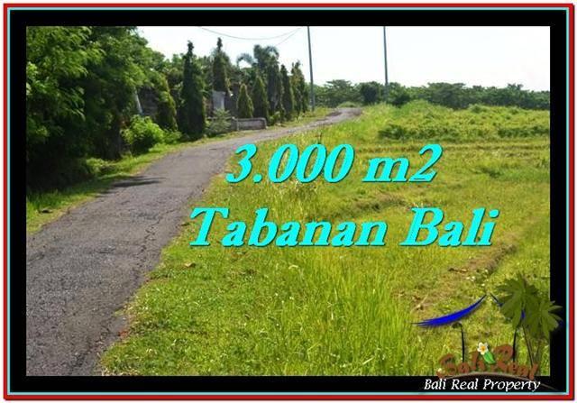 INVESTASI PROPERTI, DIJUAL TANAH di TABANAN TJTB246