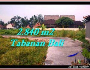 JUAL TANAH di TABANAN 2,840 m2  View sawah