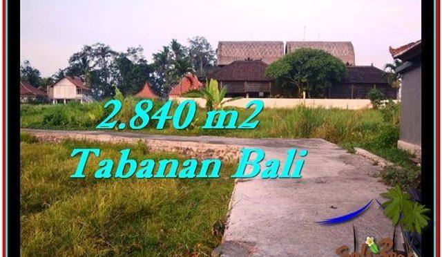 TANAH MURAH DIJUAL di TABANAN BALI 28.4 Are di Tabanan Tanah Lot