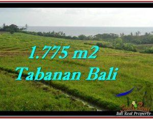 TANAH DIJUAL MURAH di TABANAN 1,775 m2 di Tabanan Selemadeg
