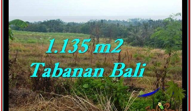TANAH di TABANAN DIJUAL MURAH 11.35 Are di Tabanan Selemadeg