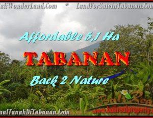 INVESTASI PROPERTY, TANAH di TABANAN BALI DIJUAL MURAH TJTB166
