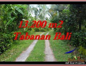 INVESTASI PROPERTY, TANAH di TABANAN BALI DIJUAL MURAH TJTB255