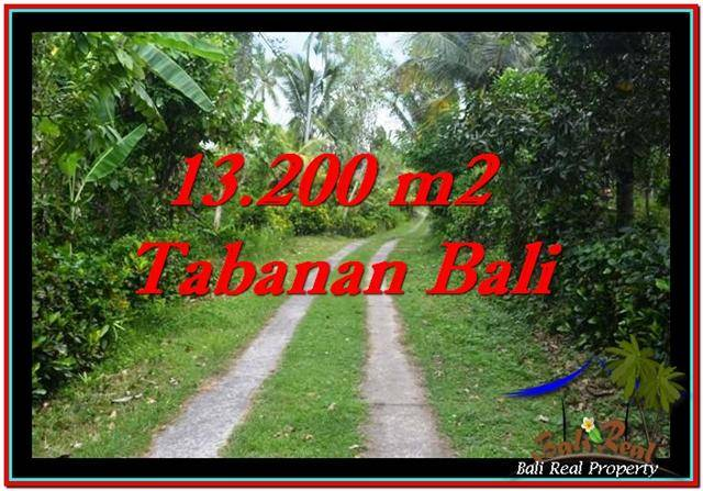 JUAL TANAH MURAH di TABANAN 13,200 m2 View kebun dan laut