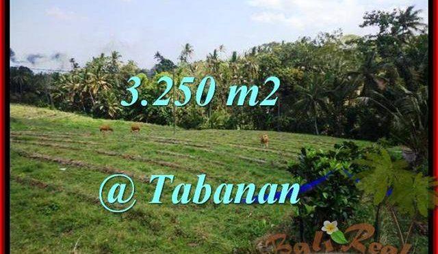 INVESTASI PROPERTY, TANAH di TABANAN BALI DIJUAL MURAH TJTB208