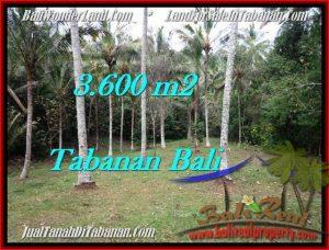 JUAL TANAH MURAH di TABANAN BALI TJTB211