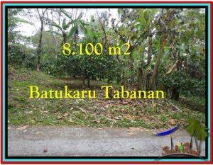 JUAL TANAH MURAH di TABANAN 8.100 m2  View Gunung dan Kebun