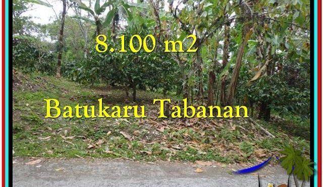 TANAH DIJUAL MURAH di TABANAN TJTB212