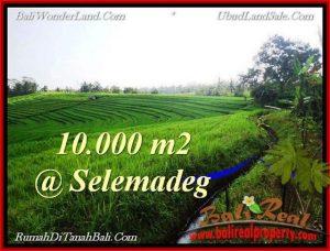 TANAH MURAH JUAL di TABANAN BALI 10,000 m2  View Sawah