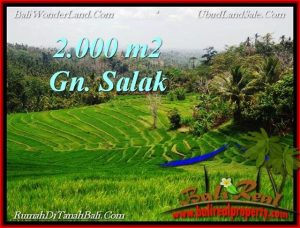 TANAH di TABANAN BALI DIJUAL MURAH TJTB220