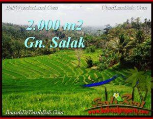 TANAH MURAH JUAL di TABANAN BALI 2,000 m2  View Gunung, sawah, Kota Denpasar