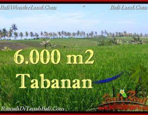TANAH MURAH di TABANAN BALI Untuk INVESTASI TJTB267
