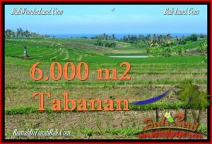 TANAH di TABANAN BALI DIJUAL MURAH 60 Are View Laut, Gunung dan sawah