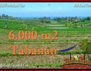 INVESTASI PROPERTI, DIJUAL TANAH di TABANAN BALI TJTB268