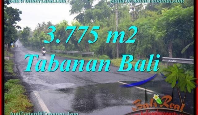 TANAH JUAL MURAH TABANAN 37.75 Are View kebun