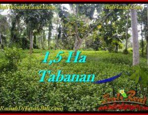 JUAL TANAH di TABANAN BALI 15,550 m2  View kebun dan sungai