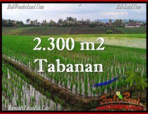 JUAL TANAH MURAH di TABANAN BALI 24 Are di Tabanan Selemadeg