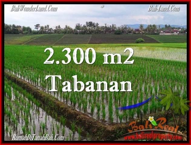 TANAH di TABANAN DIJUAL 2,400 m2 di Tabanan Selemadeg