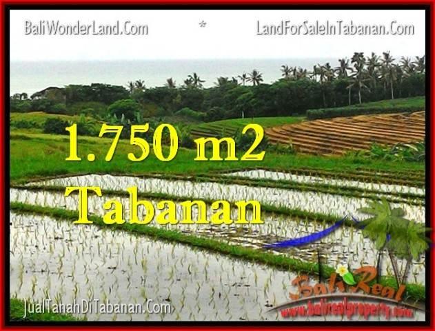 TANAH MURAH di TABANAN BALI Untuk INVESTASI TJTB264