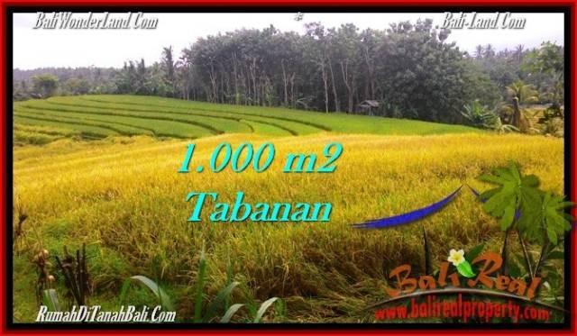 JUAL TANAH MURAH di TABANAN 1,000 m2 View sawah dan laut