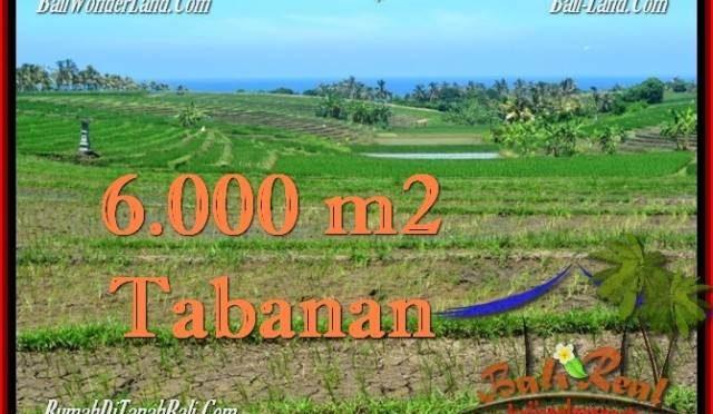 DIJUAL TANAH di TABANAN Untuk INVESTASI TJTB268