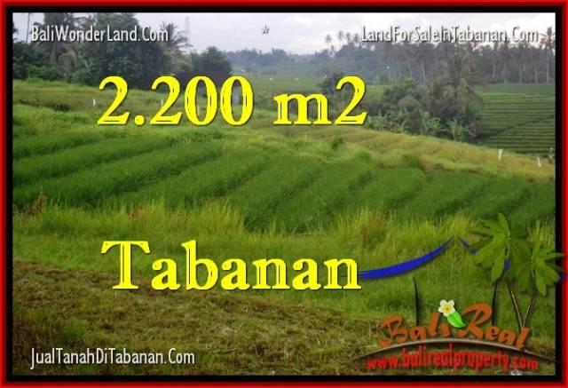 INVESTASI PROPERTY, JUAL TANAH MURAH di TABANAN TJTB269