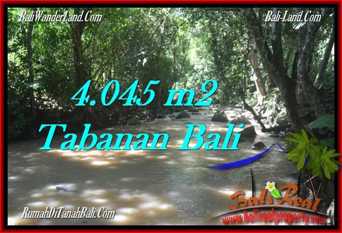 TANAH di TABANAN BALI DIJUAL MURAH 40.45 Are di Tabanan Selemadeg