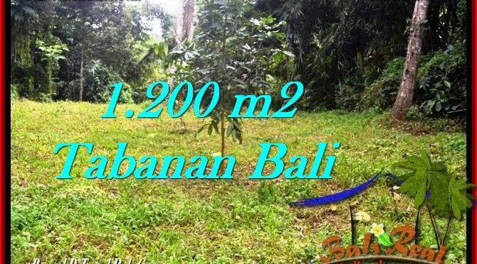 JUAL TANAH MURAH di TABANAN BALI Untuk INVESTASI TJTB278