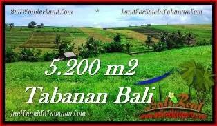 JUAL TANAH MURAH di TABANAN BALI 5,200 m2 View sawah dan sungai