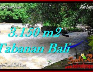TANAH di TABANAN BALI DIJUAL MURAH 3,150 m2 di Tabanan Selemadeg