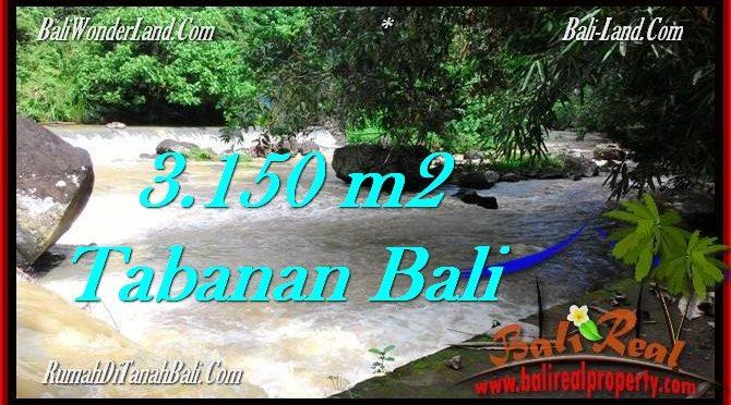 TANAH MURAH JUAL di TABANAN BALI 3,150 m2 View kebun dan sungai